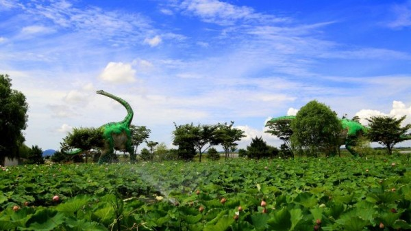 6-공룡박물관 연꽃만발 1.jpg