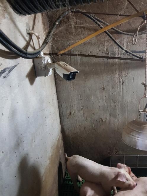 [크기변환]CCTV.jpg