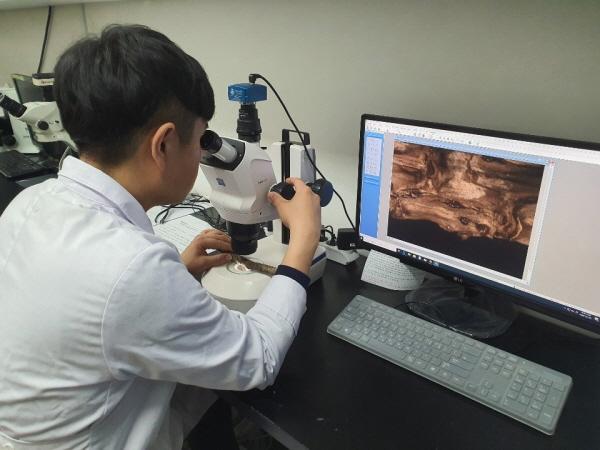 [크기변환](사진)나무병원, 현미경 관찰을 통한 수목피해 진단(1).JPG
