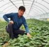해남 청년농업인 강성우씨, 무농약 황토고구마로 고소득 창출