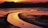 '순천만 갯벌' 유네스코 세계자연유산 등재 확정