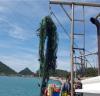 다도해해상국립공원 항․포구 해양환경 개선 복원사업 추진
